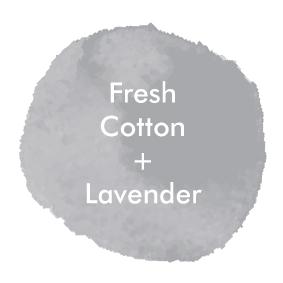 CottonLavender_Logo