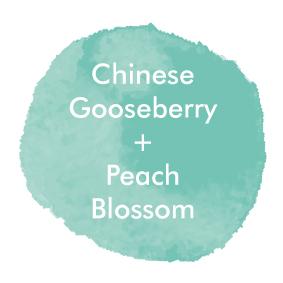 GooseberryPeach_Logo