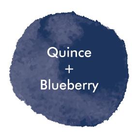 QuinceBlueberry_Logo