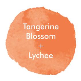 TangerineLychee_Logo